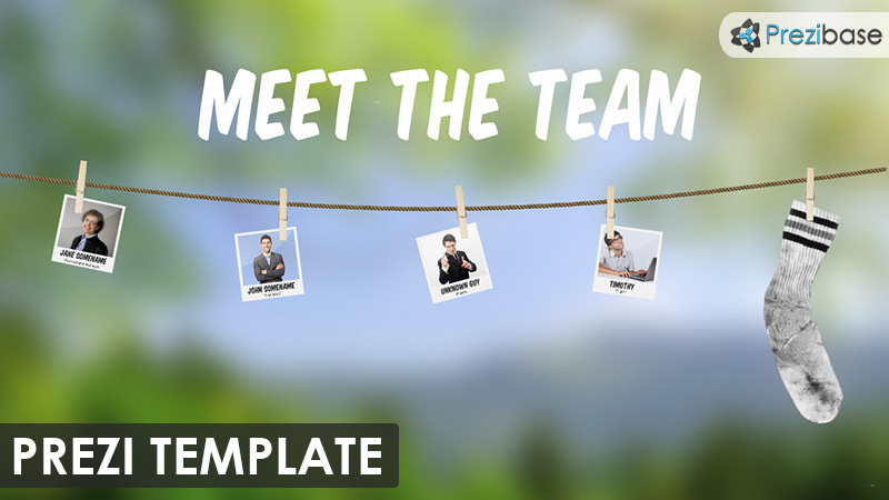team overview company partners prezi template