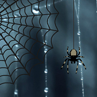 spider-cobweb-scary-dark-prezi-template