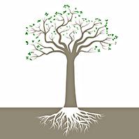 wisdom-tree-nature-silhouette-prezi-template