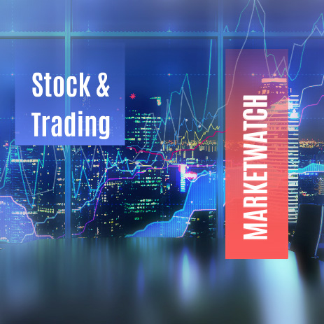 Stock & Trading is a premium template for finance, business, financial topics.