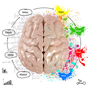 creative-brain-prezi-template